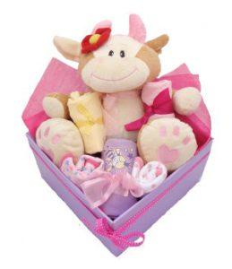 baby girl baby gift box